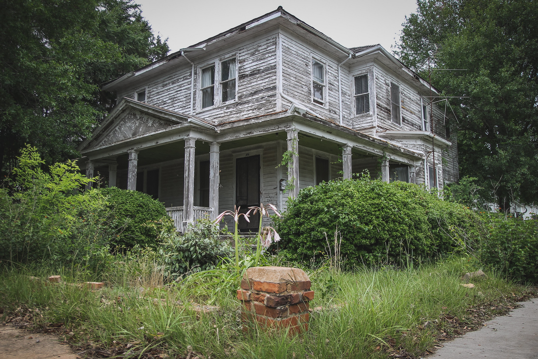 Willie House