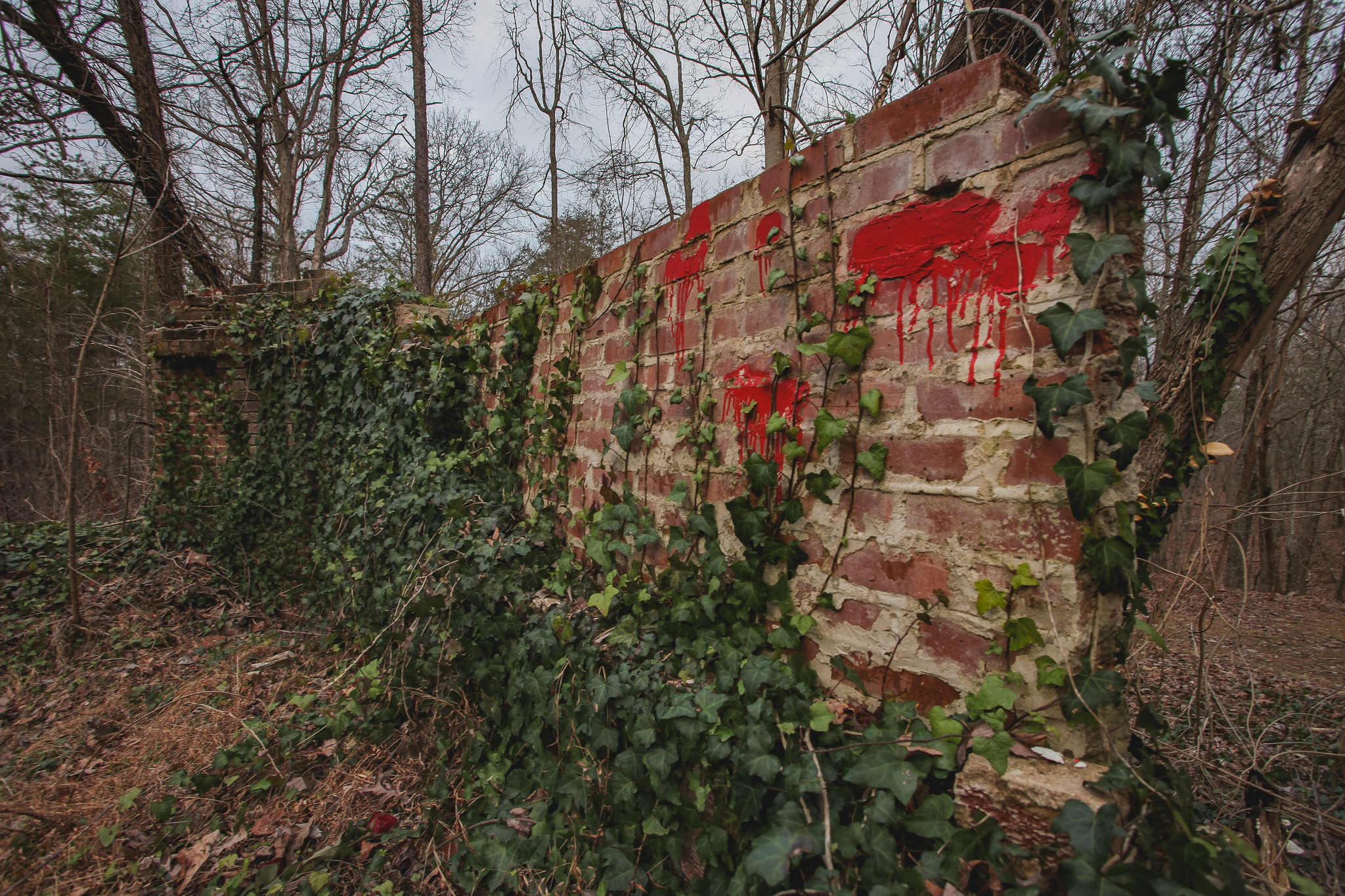 Corpsewood Manor